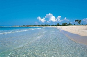 Playa de Alcudia (Alcudia):