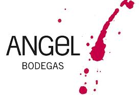Bodegas Angel Vineyard.