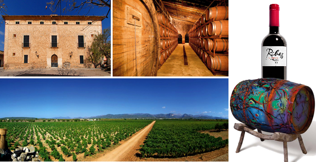 Can Ribas Vineyard Consell